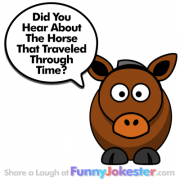 Another Funny Horse Joke