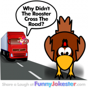Chicken Cross The Road Joke! Funny Farm Jokes