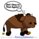 Funny Buffalo Joke