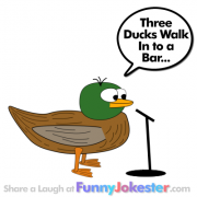 Funny Duck Jokes