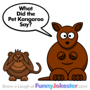 Funny Kangaroo Joke