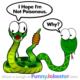 Funny Snake Joke