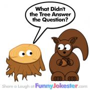 Funny Tree Joke