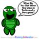 Funny Turtle Joke