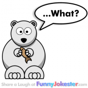 Polar Bear Joke