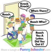 Roach Knock Knock Joke!