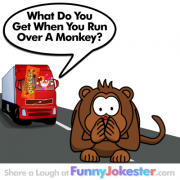 Another Funny Monkey Joke!