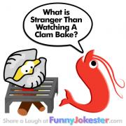 Funny Clam Joke