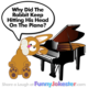 Funny Rabbit and Piano Joke