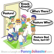 Knock Knock Joke Pasture