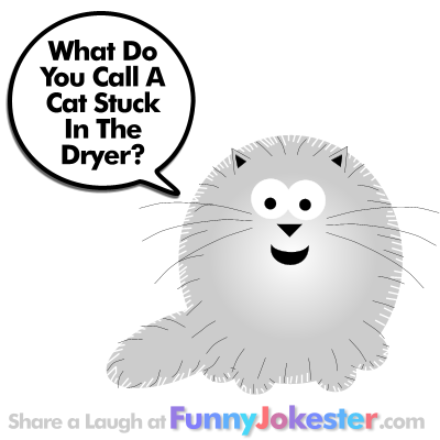 Funny Cat Joke for Kids with Cartoon!