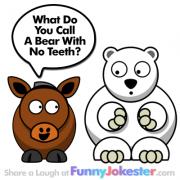 Funny Bear Joke NEW!
