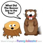Funny Beaver Joke!