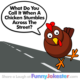Funny Chicken Joke Stumbling