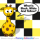 Funny Colors Joke! White, Yellow, Black