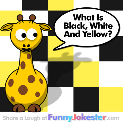 funny colors joke white yellow black