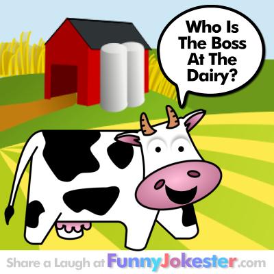 Funny cow jokes - photo#17