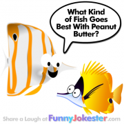 Funny Fish Joke for Kids