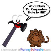 Funny Hammer Joke! Kids Jokes