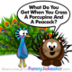 Funny Peacock Joke