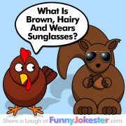 Funny Sunglasses Joke