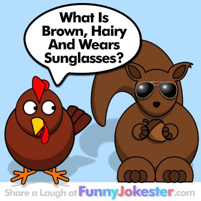 Funny Sunglasses Joke