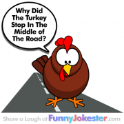 Funny Turkey In The Road Joke!