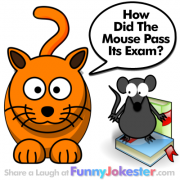 New Mouse Joke for Kids