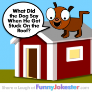 The Original Funny Dog Joke
