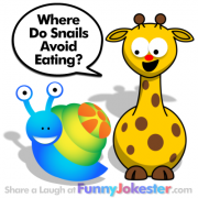Snail Joke for Kids