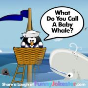 Baby Whale Joke