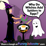 Spiders and Eggs Joke